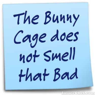 bunny cage smell