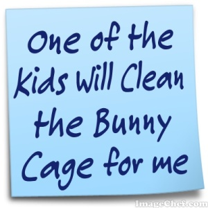 bunny cage