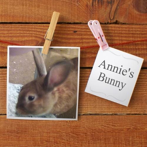 annie's bunny