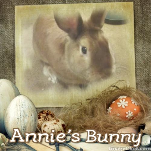 annies bunny eggs
