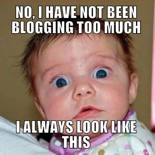 blogging too much meme