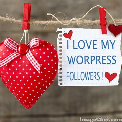 wordpress followers