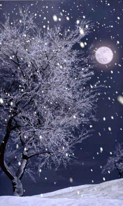 moon winter snow