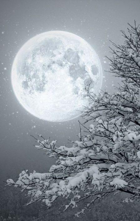 moon winter