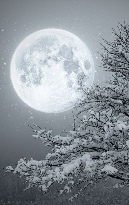 moon winter