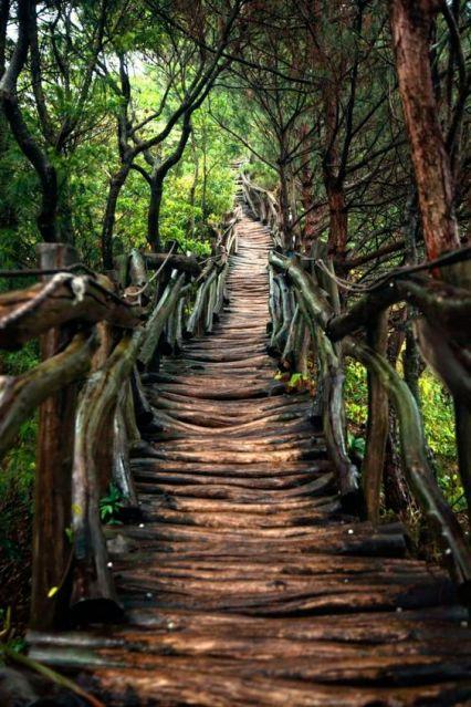 path-creation