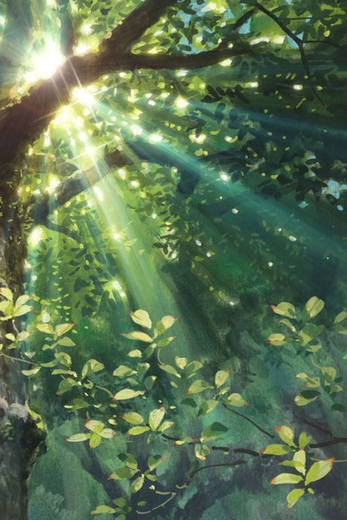 awakening sun